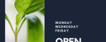 Rena-Fi's Newest Event: Open Hours